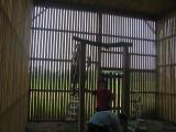 Perch in Flight Cage